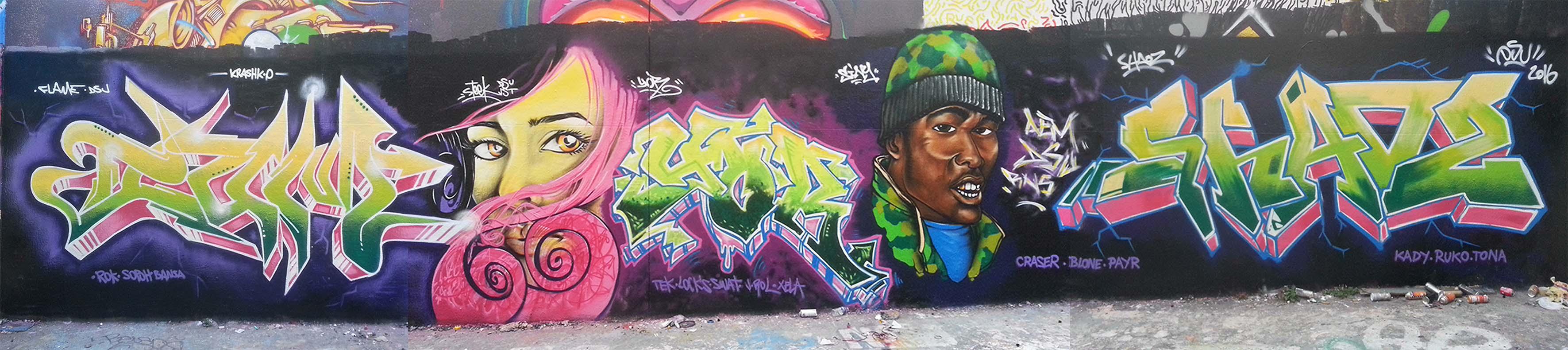 Fresque DSU AEM RN5 BD