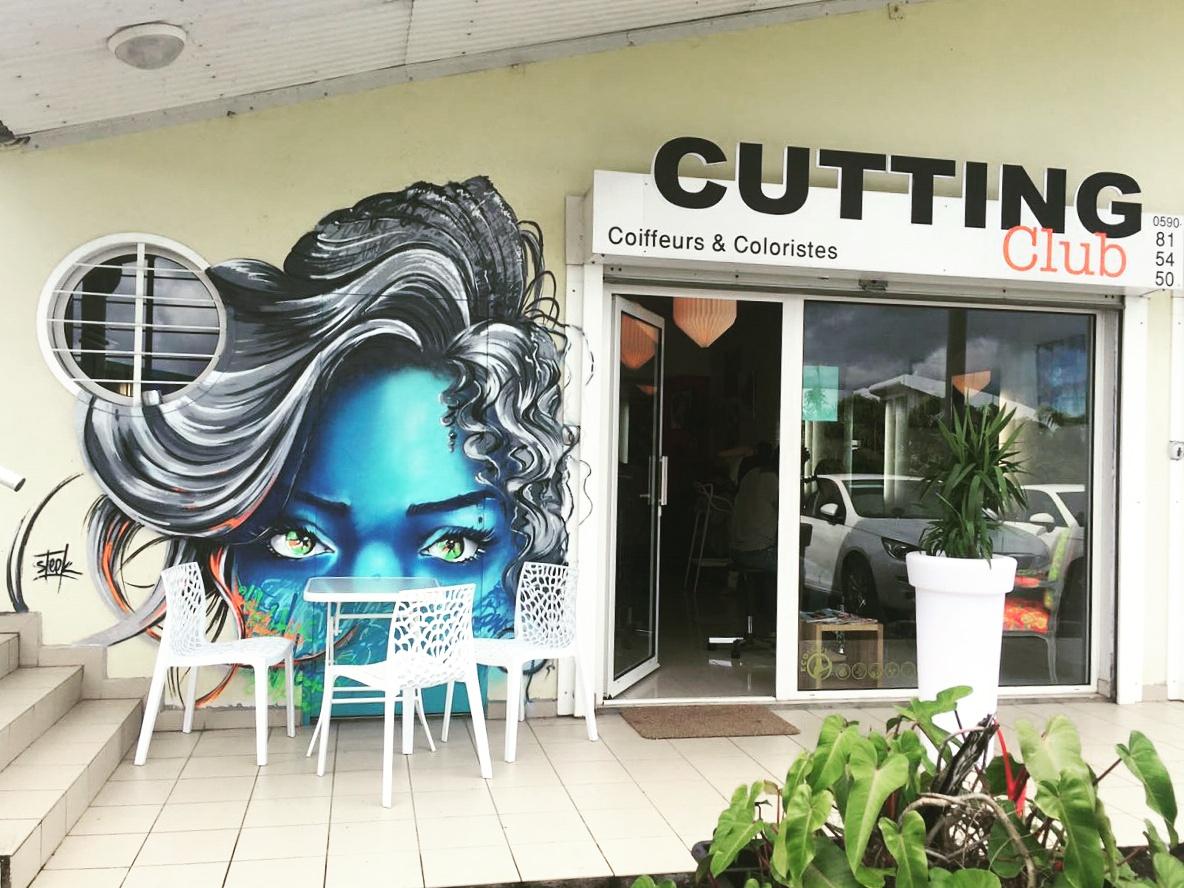steek artiste graffeur bodypainter steekoner