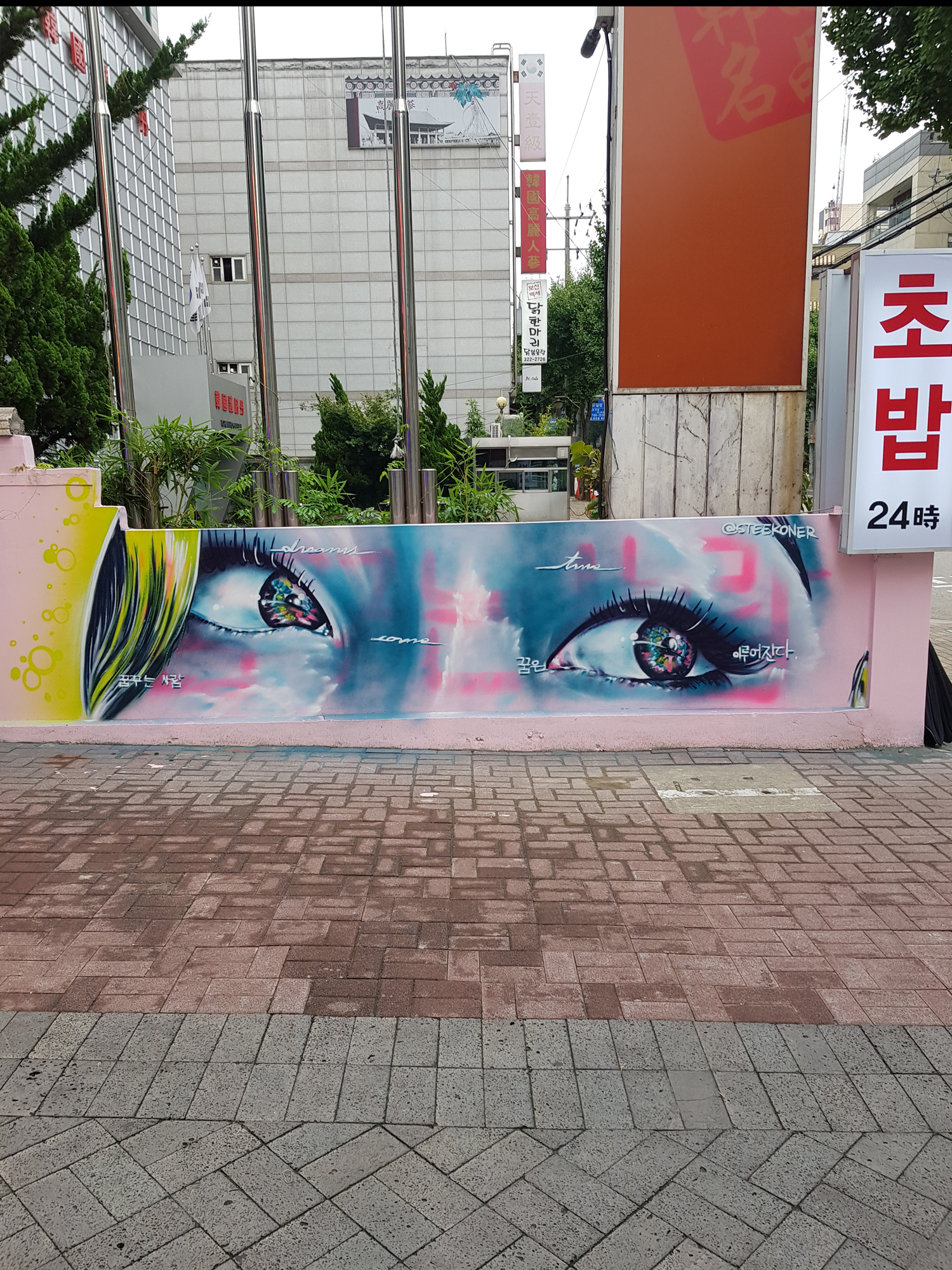 STEEK - SOUTH KOREA 2018